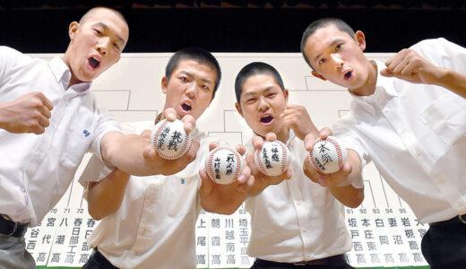浦学、鴻巣と初戦 高校野球埼玉大会、158チーム対戦決定