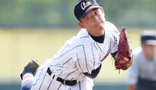 譲らぬ決勝切符 あす準決勝 見どころ 高校野球埼玉大会