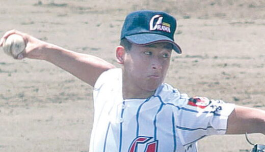 夏季埼玉県高校野球、8日開幕 大会展望